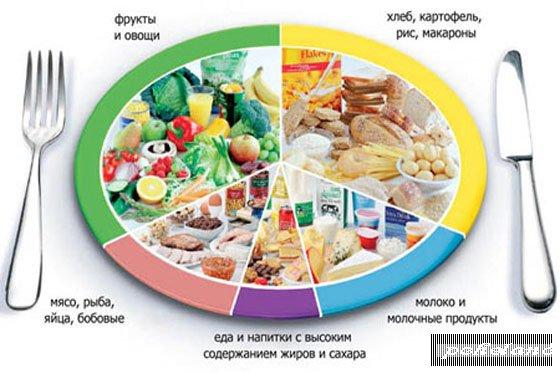 Здоровое питание и принципы здорового