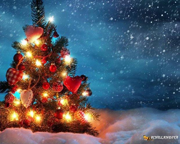 Картинки и обои с Новым годом ...: www.pchelandiya.net/novyy-god/1264-kartinki-i-oboi-s-novym-godom...